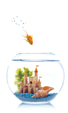 Castle in a  fishbowl
