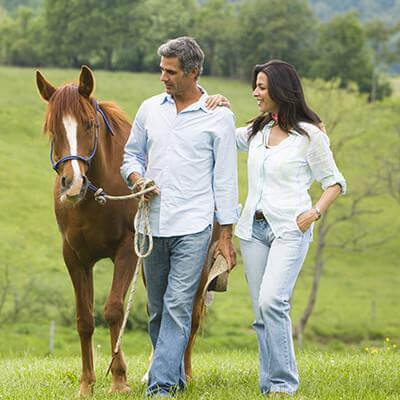 couple walking alongside a horse